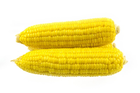 Corn on the cob isolated photo