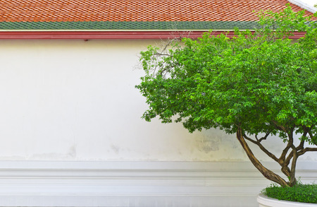 Tree in front of ancient Thai temple Stock Photo