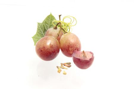 grape seeds on white background macro closeup Stock Photo