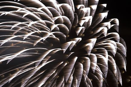 Fireworks - Long time exposure of a single shell. Wind and motion render shapes resembling a palm tree top. Stock Photo - 3610433