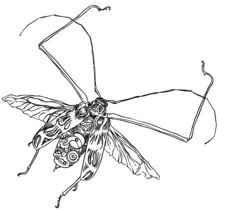 technically: Vintage Steampunk beetle on antique paper. Hands drawn vector illustration  Illustration