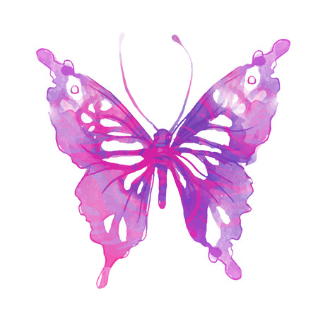 butterfly vector: Amazing watercolor butterfly. Vector art isolated on white