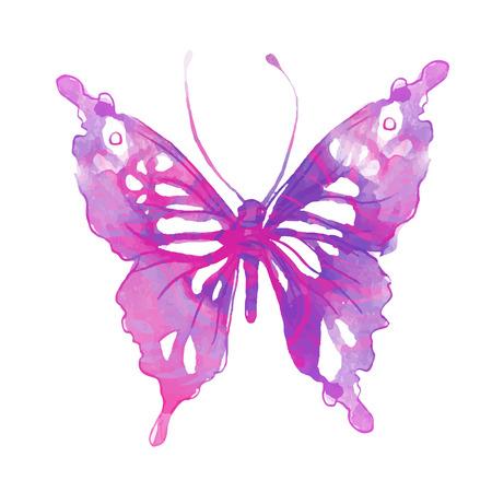 Papillon d'aquarelle. Vecteur art isolé sur blanc