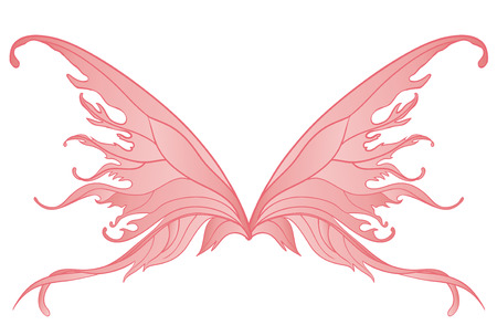 fairy wings: Pair of pink fairy wings isolated on white  Illustration
