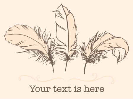 feather vector: Vintage Feather vector set. Hand-drawn illustration.