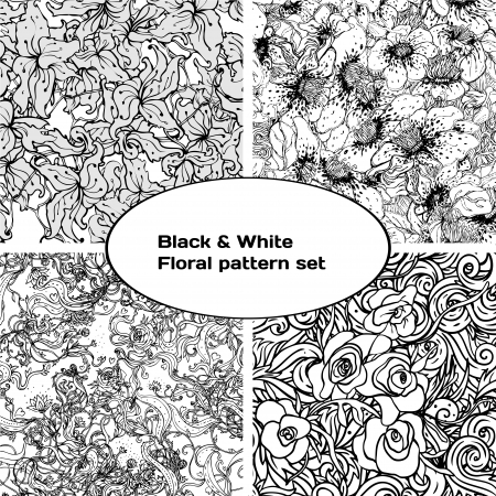 Black and white floral pattern set. Vector illustration.  Vector