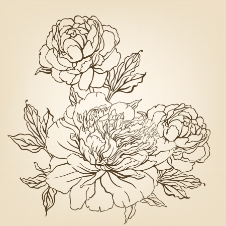 lineart: Vintage hand-drawing background with flowers. Vector illustration isolated.