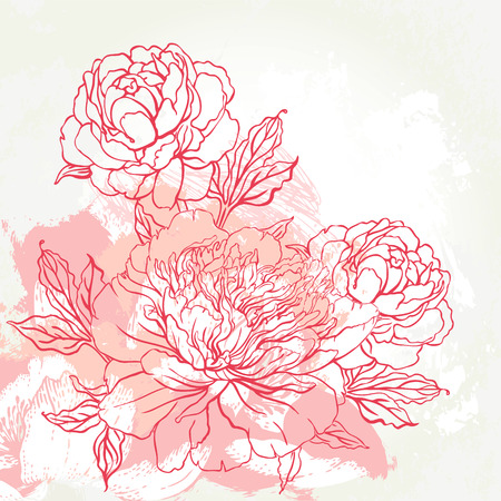 Beautiful peony bouquet design on beige background. Hand drawn vector illustration. Çizim