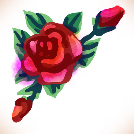 red rose: Red rose. Watercolor vector illustration isolated on white Illustration