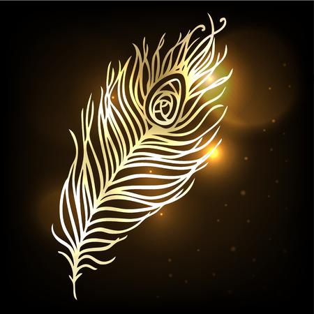 shiny background: Shiny gold feather over dark background Illustration