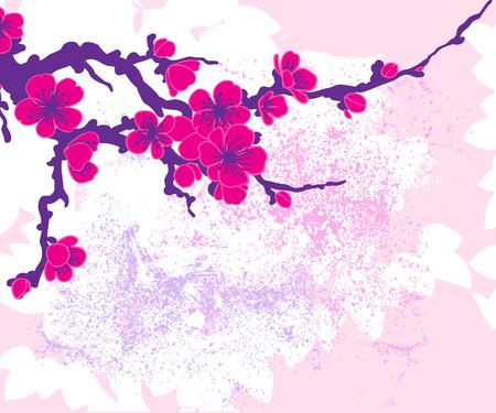 fleur de cerisier: Direction de Sakura illustration vectorielle