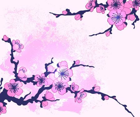flor de cerezo: Branch of Sakura vector illustration