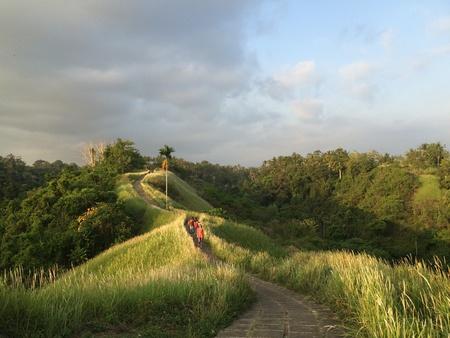 ubud: Artist path in Ubud, bali, Indonesia Stock Photo