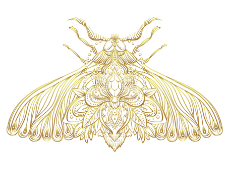 Gold and white decorative vector illustration of moth isolated on white over sacred geometry lines. Golden stickers, flash temporary tattoo. Nature, spirituality, occultism, alchemy, magic concept.
