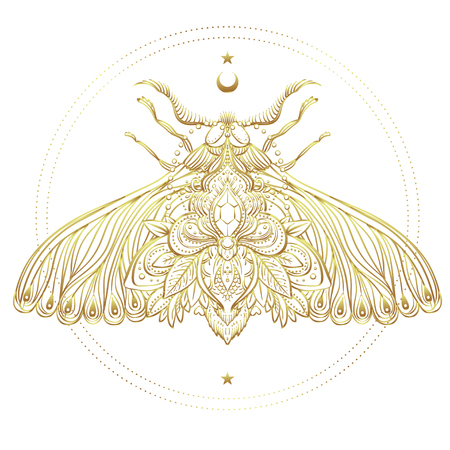 a nocturne: Gold and white decorative vector illustration of moth isolated on white over sacred geometry lines. Golden stickers, flash temporary tattoo. Nature, spirituality, occultism, alchemy, magic concept.