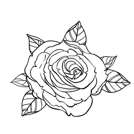 Black and white tattoo style roses with leaves isolated on white background. Vector illustrations. Romantic wedding elements. Valentines day. coloring book page for adults and kids.