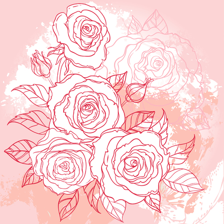 Beautiful roses bouquet drawing on beige grunge background. Hand drawn vector highly detailed line art illustration over watercolor painted texture. Wedding, beauty, tattoo outline design element. Ilustrace