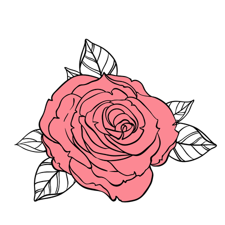 rust red: Beautiful roses bouquet drawing isolated on white. Hand drawn vector highly detailed line art illustration. Wedding, beauty, tattoo outline design element.