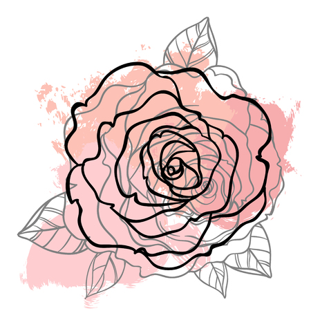 rose tattoo: Beautiful rose bouquet drawing on beige grunge background. Hand drawn vector highly detailed line art illustration over watercolor painted texture. Wedding, beauty, tattoo outline design element.