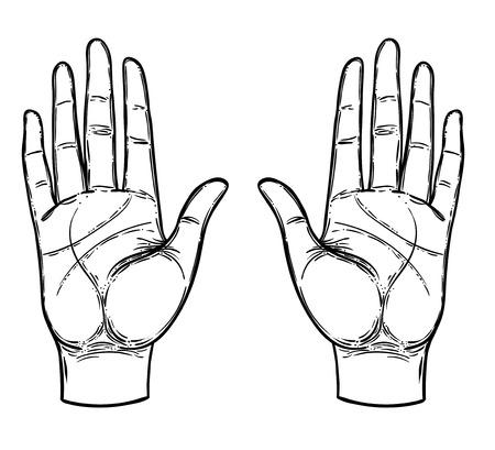 Manos Vintage. Dibujado a mano ilustración esquemática con símbolos dibujados a mano místicos y ocultos. Concepto de quiromancia. Ilustración vectorial. Espiritualidad, astrología y esoterismo.