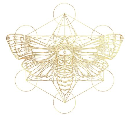 Golden moth over sacred geometry sign, isolated vector illustration. Tattoo flash. Mystical symbols and insects in gold. Alchemy, occultism, spirituality. Hand-drawn vintage. Stock Illustratie
