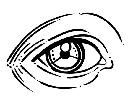 Vector illustration of human eye in engraved style. Hand drawing atrwork in black isolated on white