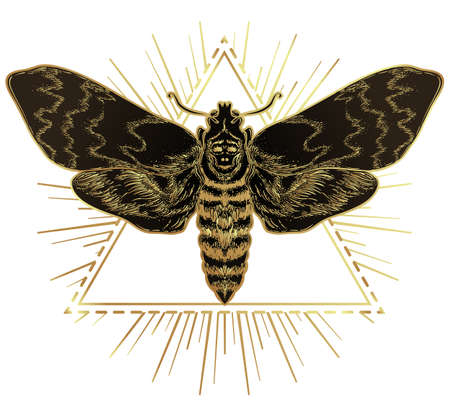 Golden moth over sacred geometry sign, isolated vector illustration. Tattoo flash. Mystical symbols and insects in gold. Alchemy, occultism, spirituality. Hand-drawn vintage. Illustration