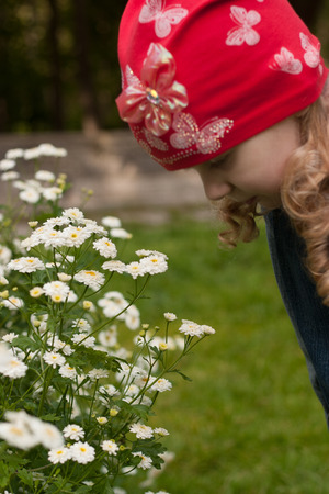 elusive: small white flowers in the last month of summer. Girl in a red cap bent to smell the flowers