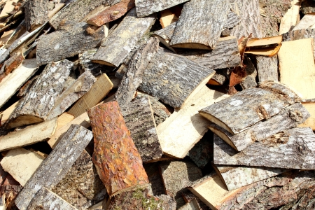 various wood firewood stacked in a pile Stock Photo - 21005751