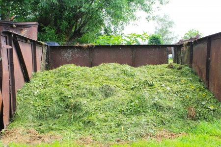 composted grass clippings chopped photo