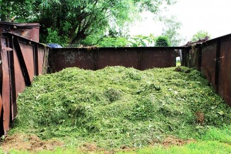 clippings: recortes de c�sped compost picado Foto de archivo