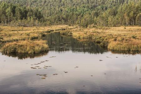 neroyfjord: Autumn lake  Stock Photo