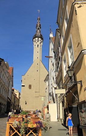 tallinn: Tallinn Old Town