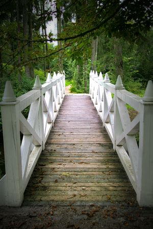wooden bridge with white piers leading to the forest path