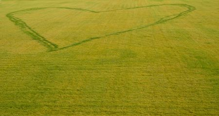 foot step: piede cuore firmare passo sull'erba, Berli