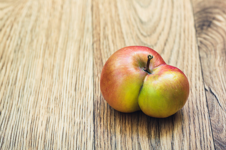 Two apples that have grown into one. Twin apples. Stock Photo