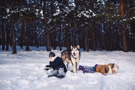 Children have fun playing with their dog in the park in winter. Concept of happy winter holidays Stok Fotoğraf