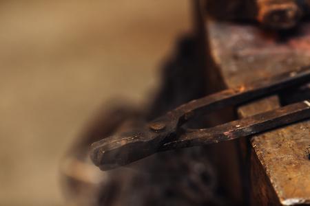 close up photo of smoking blacksmith ticks Stockfoto