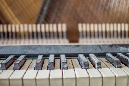 repair old piano, musical instrument, repair music, white keys and strings