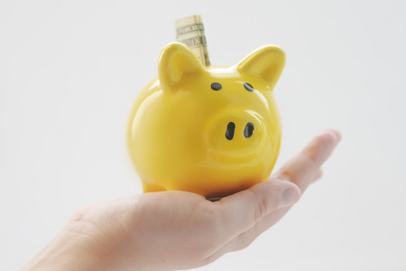 yellow pig moneybox in the hands of a child. one dollar. White background Imagens