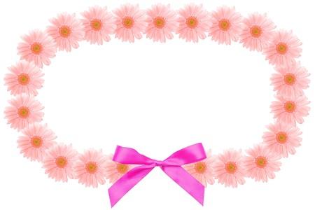 barberton daisy: Blossom flower garland of the Barberton daisy