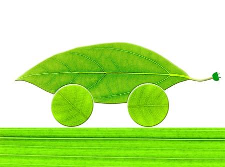 葉のエコカー 写真素材