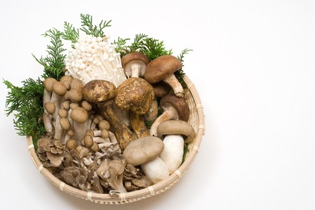 Assorted mushrooms on the basket Stock Photo