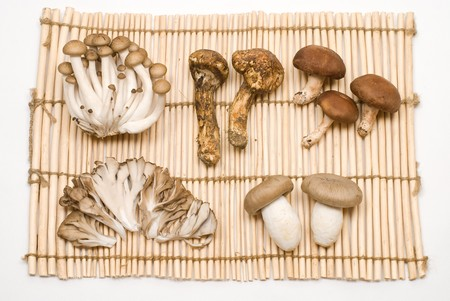 Various mushrooms on the Lanch mat Stock Photo - 8190961