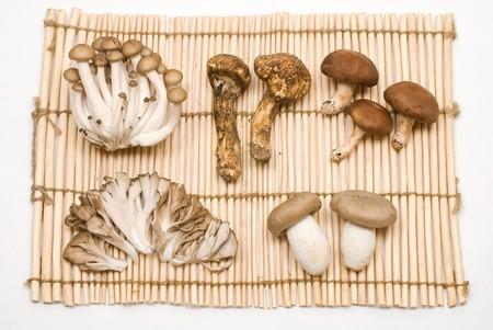 Various mushrooms on the Lanch mat Stock Photo - 8190961