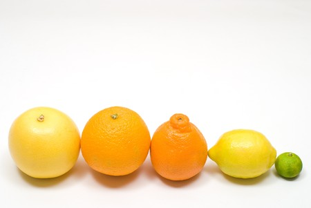 colord: Row of various citrus fruits