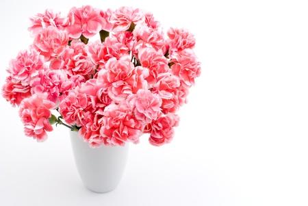 白地にピンクのカーネーションの花束 写真素材