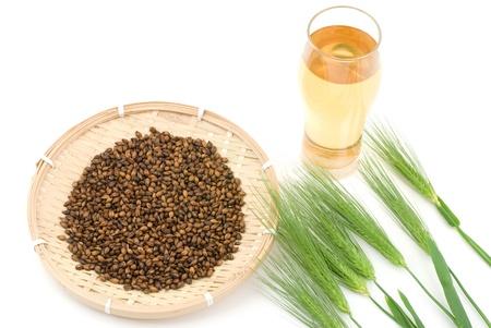Six row barley and Roasted barley tea on a white background