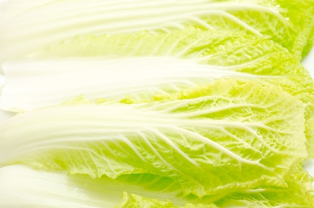 laden: Laden chinese cabbage leaf on white background