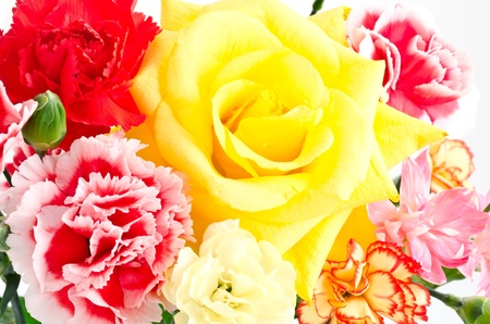 Close up of one yellow rose and various types carnation flowers all over Stock Photo - 13241525